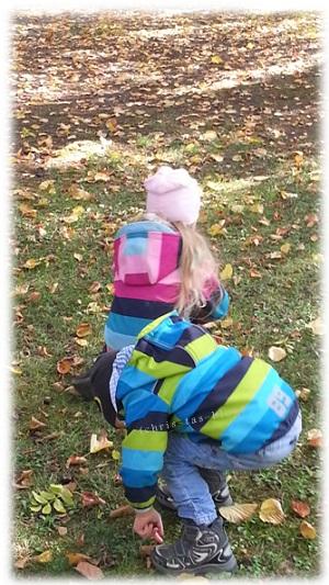 Die Kinder sammeln Kastanien