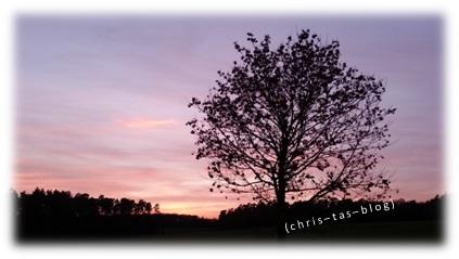 Sonnenuntergang beim Spaziergang