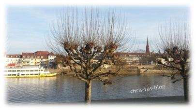 Der Main bei Würzburg