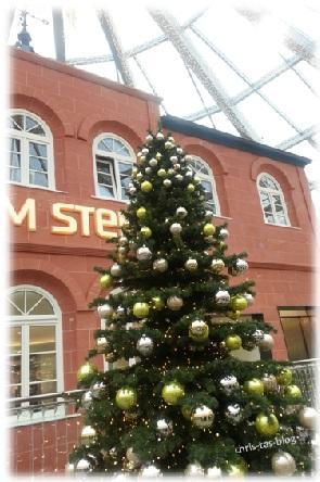 Weihnachtsbaum Forum Stein