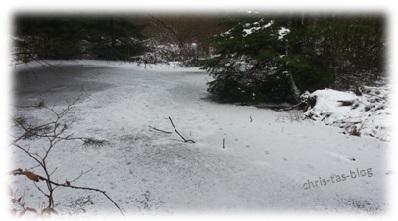 Eis-See im Wald