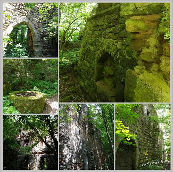 Leonrod Burgruine im Wald