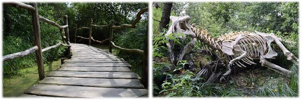Auf dem Weg zum Dinosaurier im Wildgarten Furth im Wald
