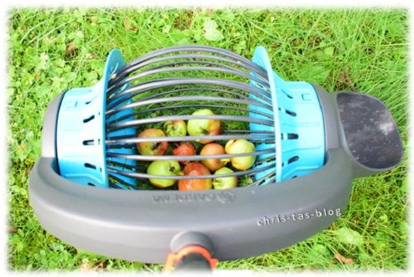 Obst aufsammelt ohne Bücken