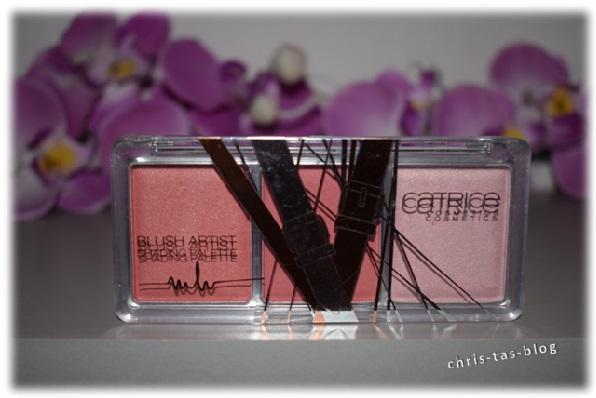 catrice-blust-artist-shading-palette