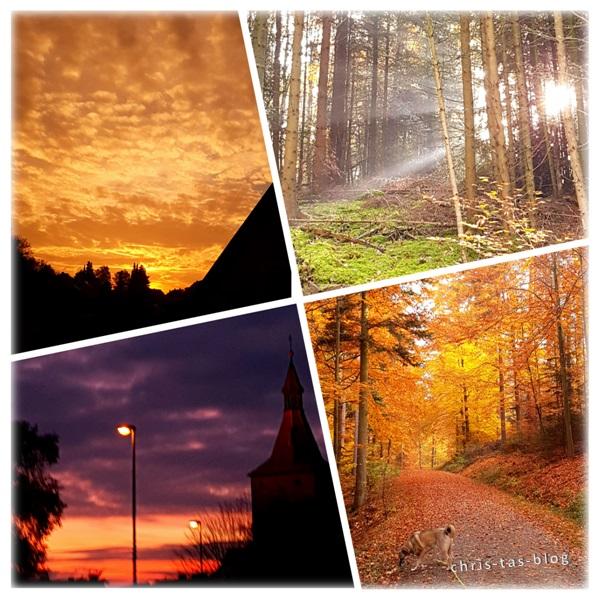 goldener Herbst - meine schönsten Fotos