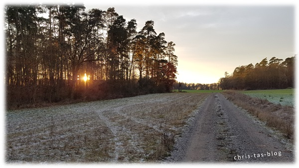 Winterwonderland November 2016