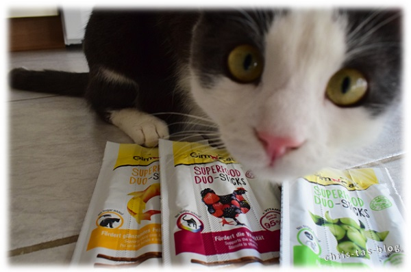 Unser Filou mit Superfood Duo-Sticks GimCat