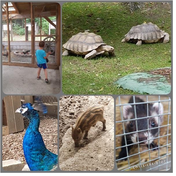 Tiergehege Tierpark Sommerhausen