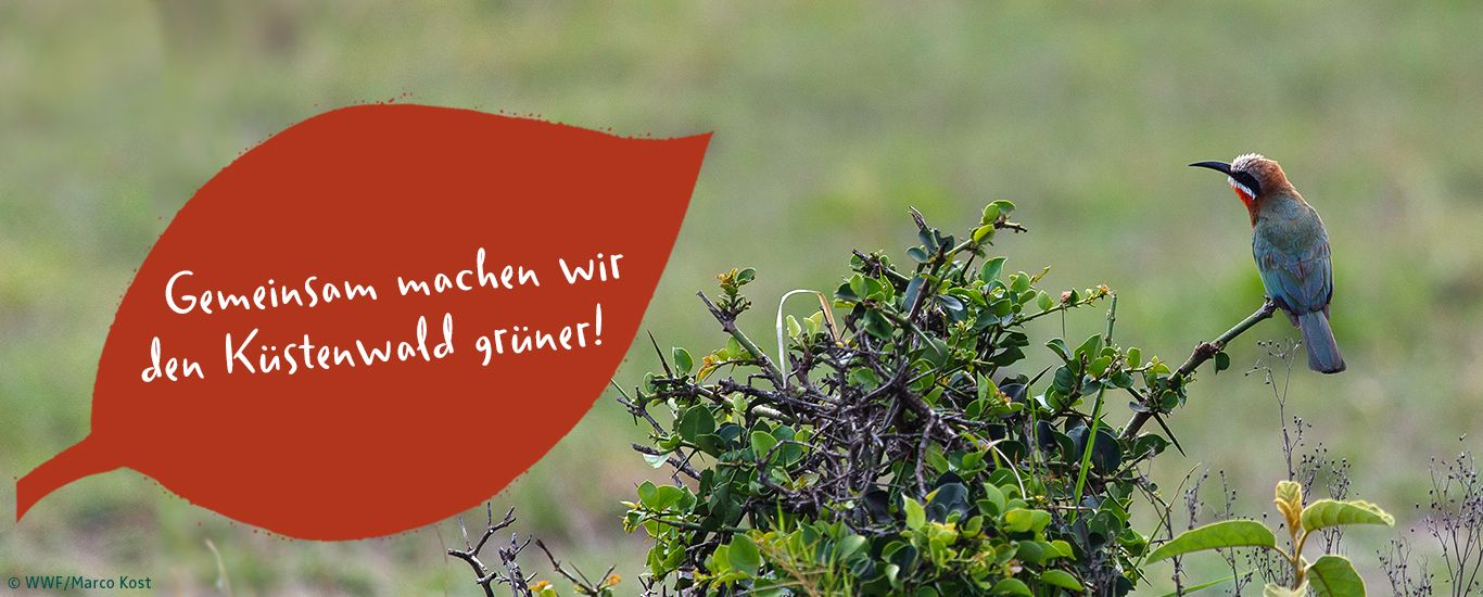 Aktion Kneipp und WWF