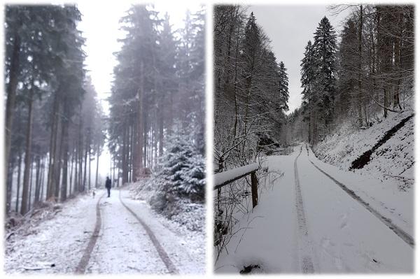 Wanderung bei Schneefall in Adelegg Allgäu