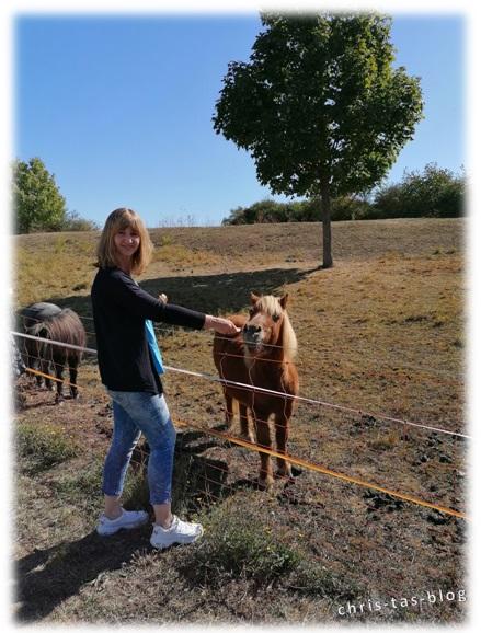 Ich mit einem Pony auf dem Kneipp Gelände Ochsenfurt