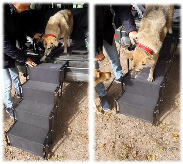 Friedrischs Hundetreppe für gelenkschonendes Ein- und Aussteigen