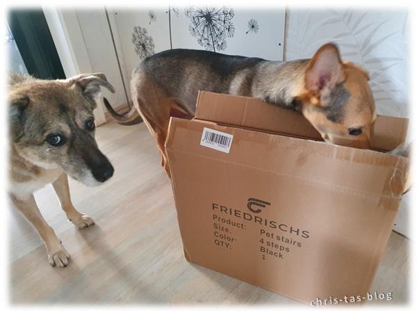 Testpaket für unsere Fellnasen von Friedrischs