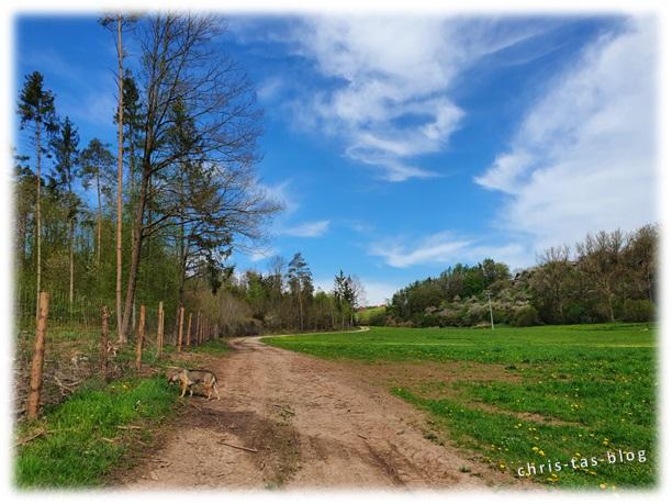 Vorbei an Wiesen und Wälder Achelbachtal Naturlehrpfad