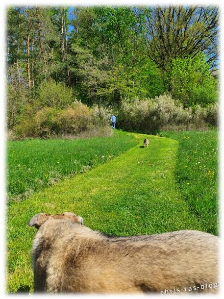 unbefestigter Weg Naturlehrpfad Achelbachtal