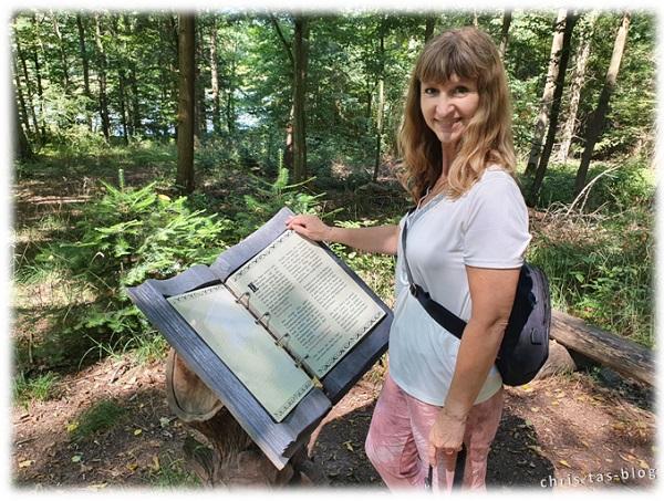 Mitten im Wald liegt ein Buch NatURwaldweg Wolfsee