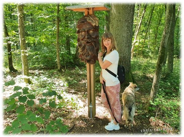 NatURwaldweg Wolfsee Methusalem im Wald