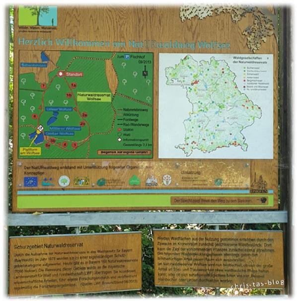 Infotafeln NatURwaldweg NatURreservat Wolfsee