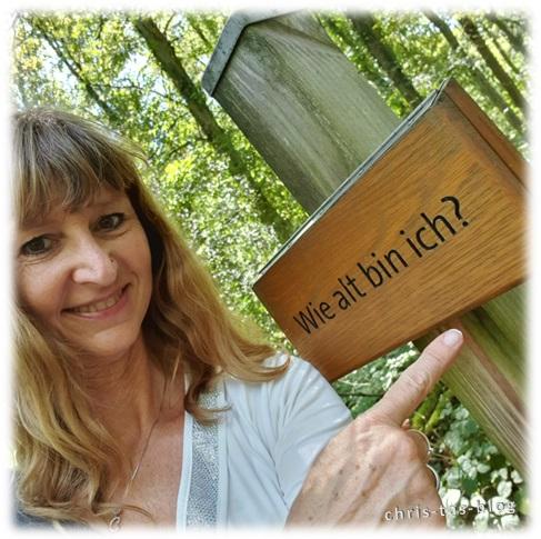Rätselspaß im Wald NatURwaldweg Wolfsee