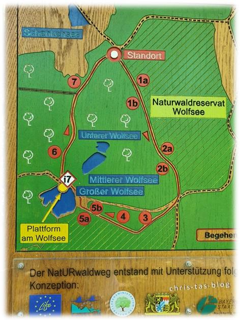 Karte NatURwaldweg Wolfsee Naturwaldreservat