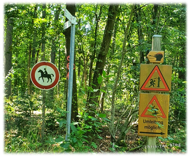 Umleitung im Wald NatURwaldweg Naturreservat Wolfsee