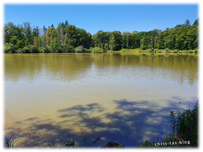 der Wolfsee in seiner vollen Pracht NatURwaldweg
