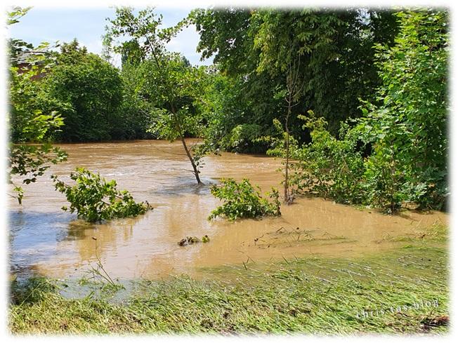 Aisch tritt über die Ufer und überflutet alles