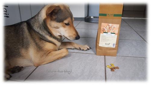 Alsa-Hundewelt-Naturfutter