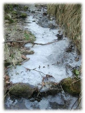 Bachlauf im Winter Münchsteinach