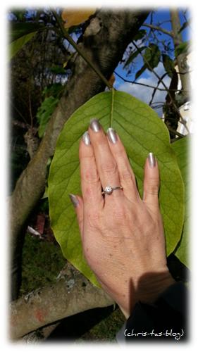 Blätter größer als die Hand an der Magnolie