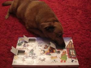 Jacky und ihr Adventskalender