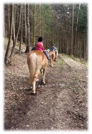 Durch den Wald reiten