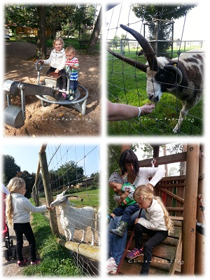 Erlebnisse Tierpark Sommerhausen