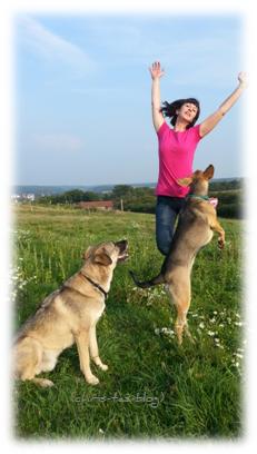 Fotoshooting mit 2 Hunden