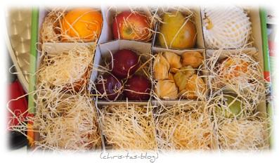 Fruchtboxen im Abo