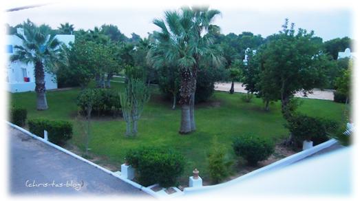 Gartenanlage Club Cala Llenya Ibiza