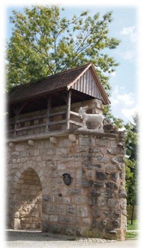 Geißbock auf der Mauer in Neustadt a.d. Aisch