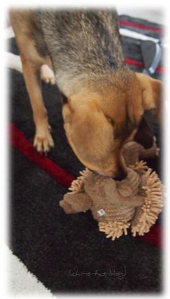 Gustav Geier von TRIXIE Hundespielzeug
