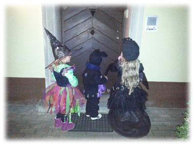Hexe, Fledermaus, Schwarze Gräfin Halloween 2014