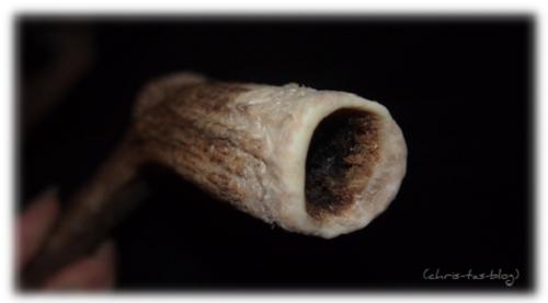 Hirschgeweih-Kauknochen nach mehrmaligem Kauen