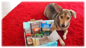 Hunde-Überraschungsbox für Mandy