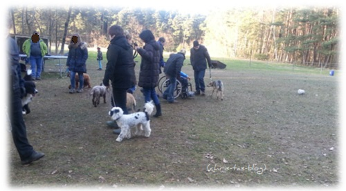 Übungen in der Hundeschule