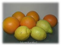 Orangen direkt aus Spanien von familiaserra