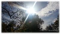 Sonnenstahlen - schön und doch gefährlich für die Haut