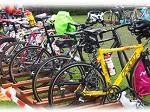 Triathlon Neustadt aisch 2013