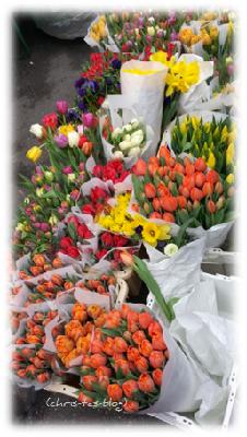 Tulpen auf dem Frühlingsmarkt