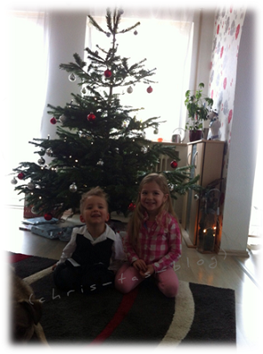 Unser Weihnachtsbaum 2014