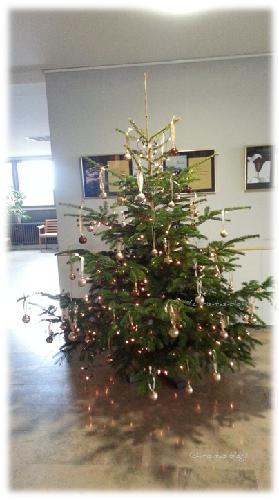 Weihnachtsbaum in der Klinik Neustadt Aisch
