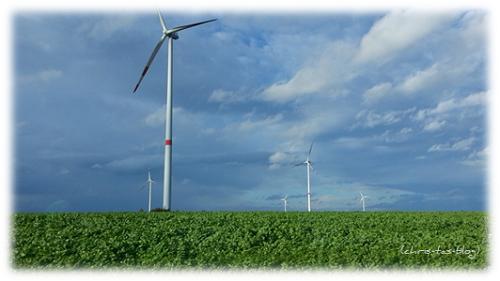 Windkrafträder - erneuerbare Energien
